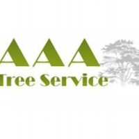 Local Popular Home Services AAA Tree Service in Central Islip NY