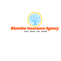 Insurance Agent Agency