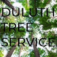 Local Popular Home Services Duluth Tree Service in Duluth GA